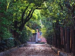 自贡又有一处工业遗址将被大改,计划改造成音乐公园