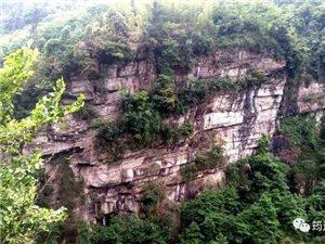 """吓坏了!筠连塘坝一位村民去""""猴子崖""""采草药,却发现一具尸体!"""
