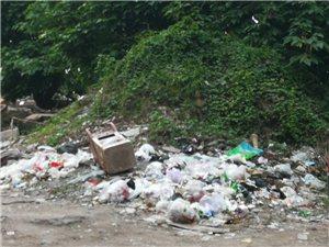 富达路高峰小区垃圾成堆、臭气熏人,长期无人处理,没人管吗?