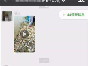 朋友圈疯传筠连海瀛有三位小孩溺亡?快来看看真相.....