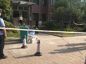 澳门赌博网站城区深圳大道附近一小区发生一起坠楼事件,一女子身亡
