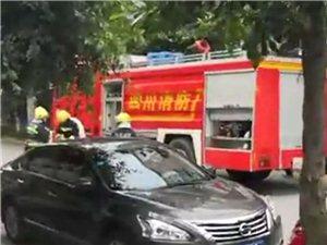 泸县周边事泸州城区一出租车自燃,车头烧毁严重无人员伤亡