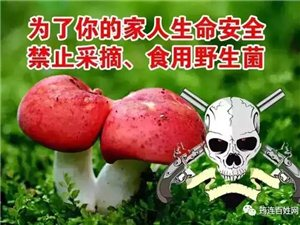 筠连人食用野生菌一定得小心中毒!这个单位全力开展防控工作!