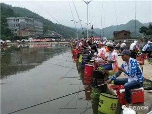 宜宾一男子在筠连不但钓了56斤鱼,还得了一万多元钱!