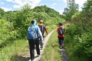 徒步胜利穿越驼腰子镇东合村-立新站-红光林场区间森林氧吧