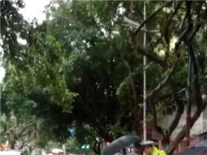 暴雨中为残疾人撑伞
