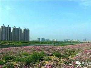 宿州市中心城区住宅用地三年滚动计划