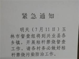 玉林市督察组将于今天到兴业县各乡镇开展秸...