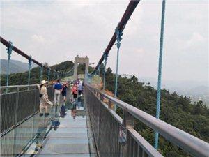 传说中的龙山玻璃桥,去了感觉后悔了