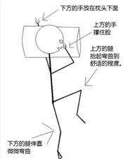 全世界最舒适的睡觉姿势