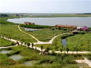 没有《延禧攻略》看了,来龙安桥国家湿地公园感受大自然吧