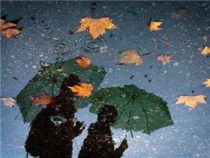 一场秋雨一场凉,你好哇,今天是一个下雨天呐!