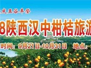 城固柑桔旅游文化节要开幕了,活动内容丰富!