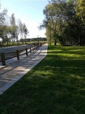 澳门轮盘赌场林业局完达山植物园一期