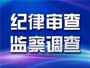 阜宁县公安局党委委员、刑事警察大队大队长严凤勤接受纪律审查和监察调查