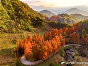 汉中:红石梁最美秋景即将到来