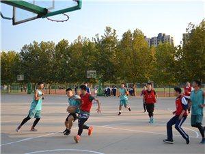 临西实验中学举办班级篮球赛