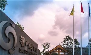 """强化市场竞争力,泸州老窖集团为供应链装上""""智能芯"""""""