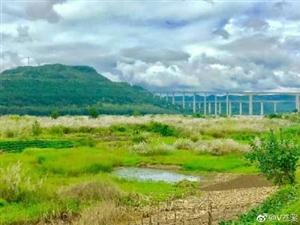 去年的芦苇荡,明年的梨仙湖。苍溪在迈向公园城市的路上。