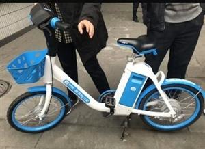 共享电动单车800辆将进军澳门威尼斯人网站,30分钟收费收3元,你觉得贵?