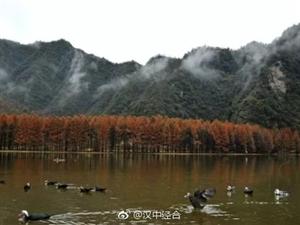深秋,南郑龙池如同仙境,风景惹人醉