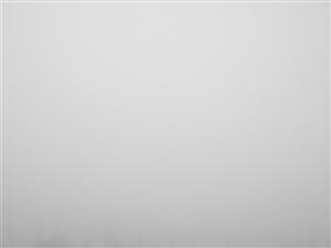 今天雾大,美高梅官网的朋友们注意行车安全