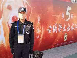 赞!汉中警犬技术在全国大赛中取得好成绩