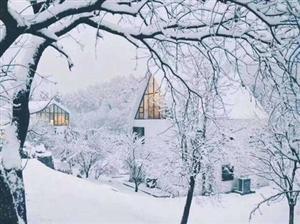 莫干山雪!你那里下雪了吗?