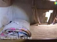 嫖客竟涉及十多个乡镇!六安警方捣毁一卖淫窝点「附现场视频」