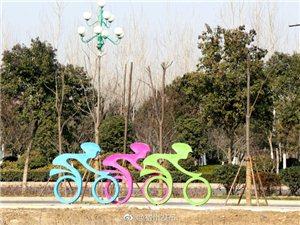 宿州大道亮相自行车运动雕塑