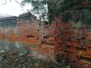 双湖西路70年代危墙,急需关注维修!!!
