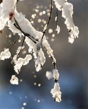 刚刚,霍邱县教育局发布应对雨雪天气紧急通知!