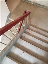 澳门威尼斯人娱乐场网址惠民居小区,男女偷情被抓奸,整个楼道全是血...