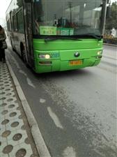 感谢鄂H1A012-(10路)公交车司机!正能量!