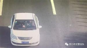 营口交警:无证驾驶上高速?不逮你逮谁?