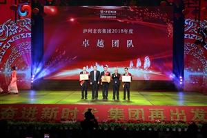 泸州老窖集团举办2019年春节联欢会暨年度先进表扬大会