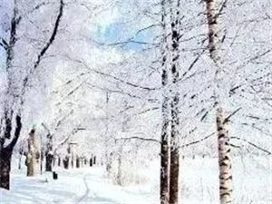 营口各地今冬为啥不下雪?天气异常因为啥