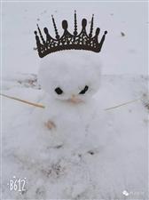 终于下雪啦!府谷迎来2019的第一场雪,朋友圈都刷爆啦!