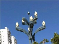 昭通二环西路路灯被吹落,安全隐患谁管?