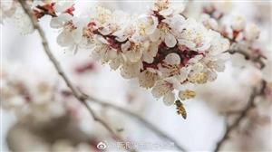 相约春天,相遇在汉中兴汉胜境