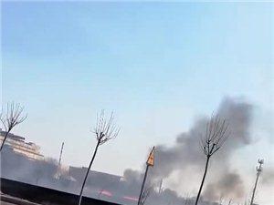 滨州裕华冬枣园着大火!现场浓烟滚滚,火光一片!
