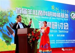 府谷县首届羊肚菌科研种植基地观摩研讨会在墙头农业园区举办