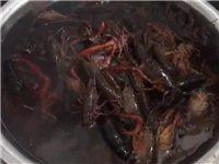 洗刷刷,洗刷刷,吃龙虾的季节到了,哈哈哈!