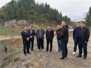 重庆市黔江区法院验收环资资源案件土地治理修复效果