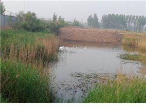 滨州这里,一到夜间就有打车把煤灰河里!异味严重