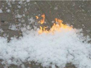 最近,因柳絮杨絮造成的火灾频发,大家儿应注意防火安全。
