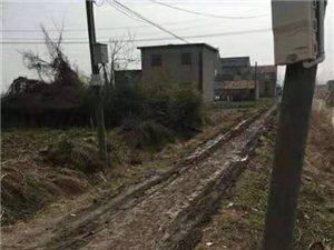阜���h新�湘�沙�炒迨�一�M,�l村道路到目前�橹梗��是��泥路一直�]人修