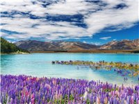 美不胜收的新西兰,你准备好了吗?