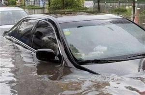 暴雨时,很多车主宁愿车被淹也不开走,结果让人意外,真是涨见识