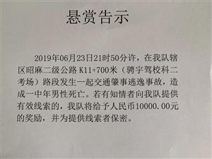 交通肇事致人死亡逃逸,昭�交警�屹p10000元征集�索!